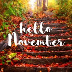 Welcome to November! New month; new mindset; new start; new intentions; Hallo November, Welcome November, Days In November, Hello December, Sweet November, November 2019, November Pictures, November Images, November Monat
