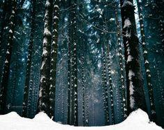 It spelled Narnia by Lars van de Goor on 500px