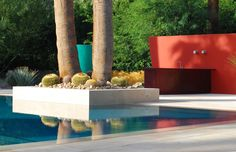 Steve Martino, a landscape designer based in Arizona, creates a modern day homage to Mexican artist Luis Barragán in a Palm Springs Garden where jewel colors and sculptural planting are reflected in a turquoise pool. Photograph by Steve Martino.