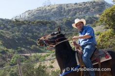 The best companies to take you horseback riding in Los Angeles from the Hollywood Hills to the Malibu coast, Palos Verdes Peninsula and Orange County.