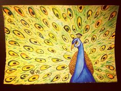 Påfågel // Peacock