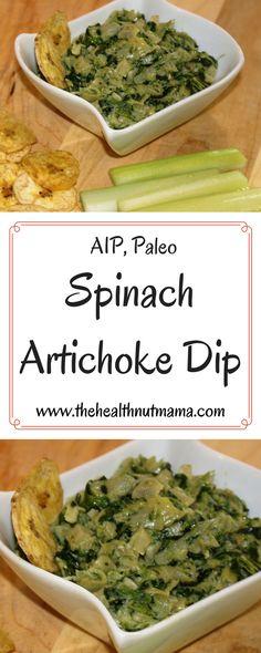 Easy AIP Paleo Artic