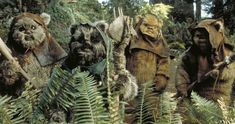 Will Ewoks Return in the Han Solo Movie? -- An image from the set clearly shows an Ewok in Solo: A Star Wars Story, but will the scene in question remain in the movie? -- http://movieweb.com/solo-star-wars-story-ewoks-return-photo/