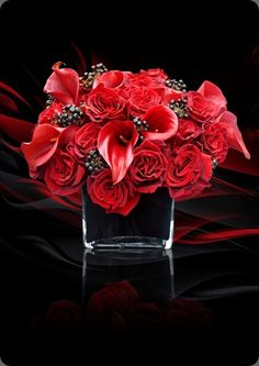 Blazing red roses and calla lilies comprise this modern floral arrangement by   L'Oasis floral design
