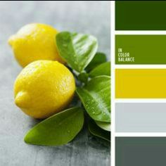 Good Yellow And Green Color Inspiration Photo Gallery