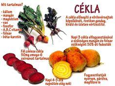 Életmód cikkek és képtár: Zöldség és gyümölcsök hatásai Health 2020, At Home Workouts, Cantaloupe, Vitamins, Spices, Health Fitness, Food And Drink, Healthy Eating, Herbs