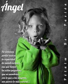 ANGEL   PÁGINA      ÁNGEL & PÉTALOS    No debemos perder nunca la capacidad de asombrarnos... esa que tienen los niños pequeños, que se asombran... con lo que a los mayores, nos parece lo más natural...