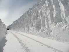 chemin tempête de neige
