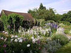 """When Rosamund and John Wallinger moved to Upton Grey in they found the Manor House they had bought derelict. The garden was over-run with brambles and untamed trees and shrubs. """"There were vi… Garden Yard Ideas, Love Garden, Dream Garden, Back Gardens, Outdoor Gardens, Landscape Design, Garden Design, Famous Gardens, English Country Gardens"""
