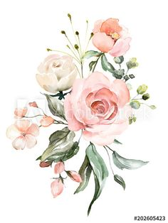 watercolor flowers floral illustration Leaf and buds Botanic composition for wedding or greeting card branch of flowers - abstraction pink roses Illustration Rose, Floral Illustrations, Flower Background Wallpaper, Flower Backgrounds, Art Floral, Flower Graphic, Watercolor Rose, Watercolor Paintings, Watercolor Wedding