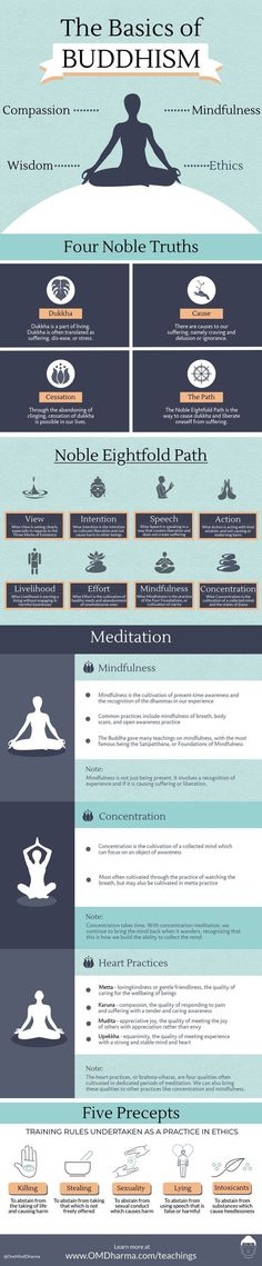The basics of Buddhism infographic #meditationinfographic