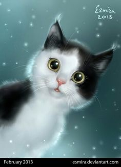Why Do Cats Suddenly Stare at the Walls, Nothing, or Space I Love Cats, Crazy Cats, Cool Cats, Kittens Cutest, Cats And Kittens, Warrior Cats, Cat Drawing, Beautiful Cats, Beautiful Artwork