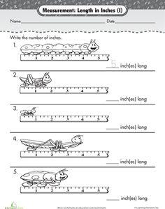 measurement length in centimeters math measurement first grade measurement measurement. Black Bedroom Furniture Sets. Home Design Ideas
