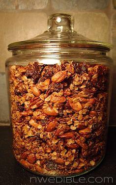 Honey, Nut and Raisin Granola (1)