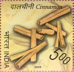 India Post - 2009 - SPICES OF INDIA  Cinnamon