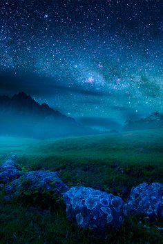 ((Closed RP)) I lay on the cool grass my fingers twirling through the mist. I sighed and looked up at the stars, brilliant in the sky