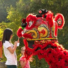 traditional Dragon meets the new age.  More shots from the Cultures in Casey Festival on   My blog, Cultures in Casey