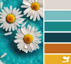 color palette and photo from Deisign seeds ... scrumptious colorls ... teals and sienas ... golden yellow and dow gray ... bright white ... daisies ...