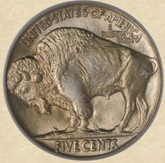 1925 Buffalo Nickel reverse Us Coins, Coin Collecting, Buffalo, America, Money, Personalized Items, Silver, Gold, Kids