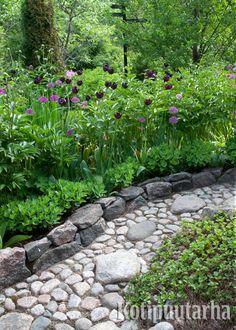 Kivituhkaan upotetun kivet muodostavat kauniin pinnan. Mukaan voi hyvin sovitella muutaman isommankin kiven. www.kotipuutarha.fi