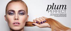 Plum Perfect | LT Insider