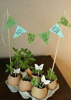 "Adorable eggshell planters add a big ""Spring"" to your step!"