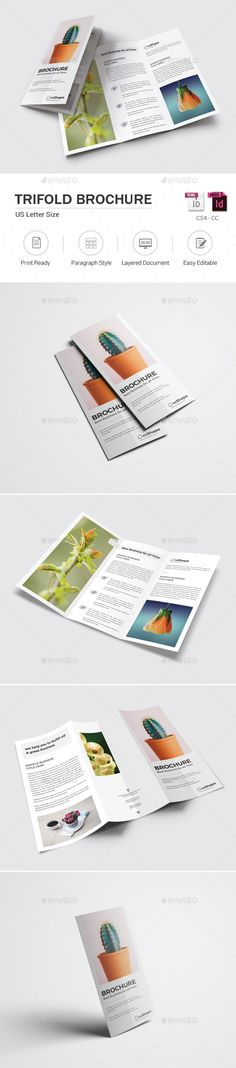 Spa Brochure Template Brochure template and Brochures - spa brochure template