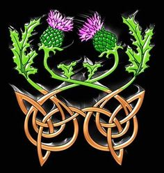 Thistle and knot leather work Celtic Symbols, Celtic Art, Celtic Knots, Scottish Symbols, Scottish Gaelic, Celtic Patterns, Celtic Designs, Celtic Images, Thistle Tattoo