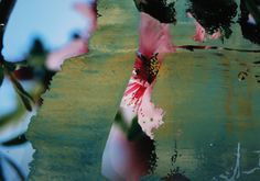 "Koen Lybaert; Oil/Digital 2014 Overpainted Photograph ""Blossom"""