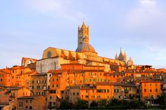 Image from http://d1vmp8zzttzftq.cloudfront.net/wp-content/uploads/2012/09/view-of-the-italian-hill-town-of-siena-italy-under-the-glow-of-the-setting-sun-1600x1066.jpg.