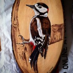 woodpecker pyrography and painting on wood