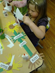 SCIENCE What are some parts of a plant? CC Cycle 1 handprint parts of a plant Kid Science, 1st Grade Science, Plant Science, Kindergarten Science, Elementary Science, Science Lessons, Teaching Science, Kindergarten Classroom, Science Activities