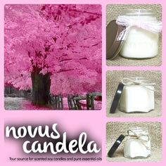Soy Candle Mason Jar. Japaneses Cherry Blossom Scented Soy Candle. Mason Jar Candle Soy Candles Scented Candle. Handmade Candle. 2, 4 & 8 oz - pinned by pin4etsy.com