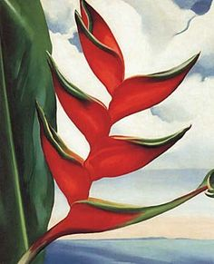 Geogia O'Keefe and the Heliconia