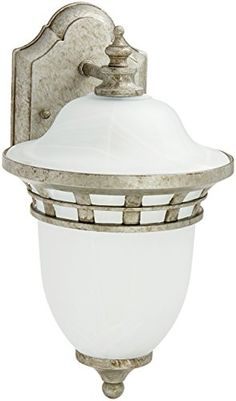 Trans Globe Lighting 5110 AP 1Light Coach Lantern Antique Pewter * Find out more about the great product at the image link. This Amazon pins is an affiliate link to Amazon.