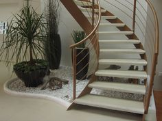 escaleras interiores con jardin - Buscar con Google