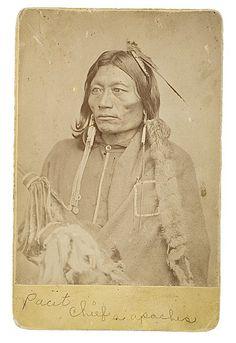 Pacer - Kiowa Apache - 1872