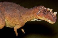 Dinosaur Modeller: Shane Foulkes 1/18 Ceratosaurus