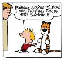 Calvin and Hobbes (DA) - Hobbes jumped me, Mom! I was fighting for my very survival!!