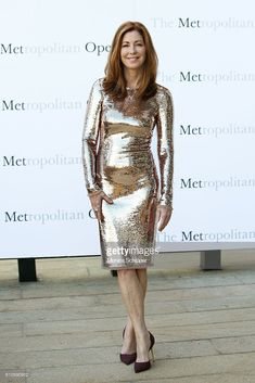 Actress Dana Delany attends the Met Opera Season Opening Performance Of 'Tristan Und Isolde' at The Metropolitan Opera House on September 2016 in New York City. Dana Delany, The Hollywood Reporter, Hollywood Actresses, Tristan Und Isolde, Le Jolie, Metallic Dress, Beautiful Celebrities, Beautiful Women, Satin Dresses