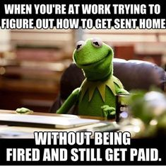 #workplace #workmemes #memes #funnymemes #kermitmemes #salary #funny Workplace Memes, Office Humor, Memes Humor, Funny Humor, Ecards Humor, Tgif Funny, Job Humor, Funny Sarcastic, Funny Texts
