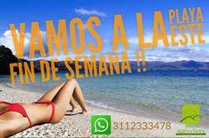 WhatsApp : 3112333478