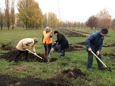 В міському парку «Дружба» продовжуються роботи по висадці дерев, кущів та квітів. Так в першій декаді листопада поточного року там висаджено 50 саджанців в'яза та 25 – сосни Кримської.