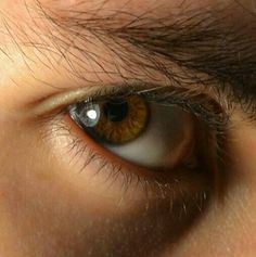 Body Reference, Anatomy Reference, Photo Reference, Human Eye, Human Body, Pretty Eyes, Beautiful Eyes, Brown Eyes Aesthetic, Eye Study