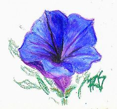 Easy Pastel Drawings | Blue Flower sketch by Robert A. Sloan in VanGogh oil pastels.