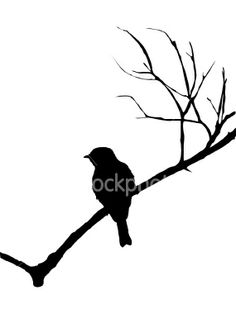 Silhouette of a bird on branch Royalty Free Stock Vector Art Illustration