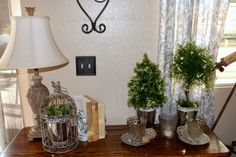 how to make indoor topiaries- I like the airiness of this topiary