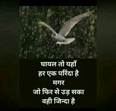 Motivational Poems, Heart Broken, Hindi Quotes, Thoughts, Sayings, Words, Uplifting Poems, Lyrics, Lost Love