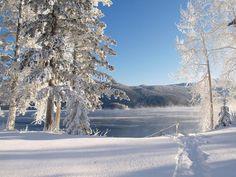 Zimski pejzaži - Page 37