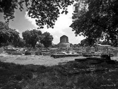 Dhamek Stupa. Sarnath, India. By Jaime Maciá jaimemacia.tumblr.com